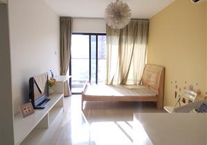四海公寓 单身公寓 精装修 近公园 总价低 自住