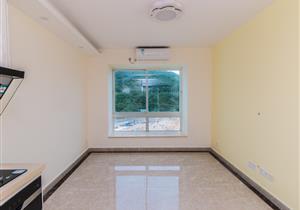 水云间 精装复式一房一厅 看海景学区房